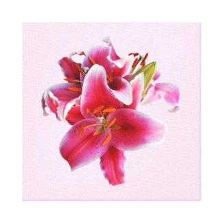 Cluster of Stargazer Lilies Canvas Print