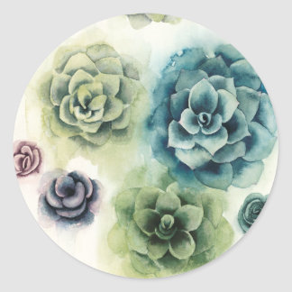 Cluster of Succulents Classic Round Sticker