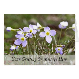 Cluster Of Tiny Bluets Card