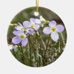 Cluster Of Tiny Bluets Christmas Tree Ornaments