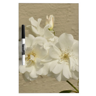 Cluster of White Roses Dry Erase Board