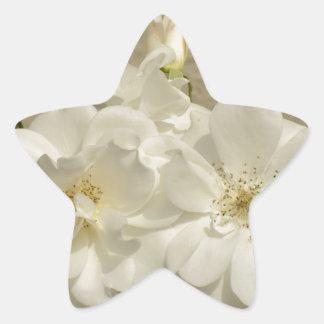 Cluster of White Roses Star Sticker
