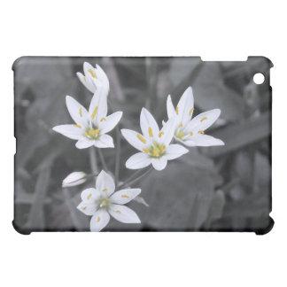 Cluster of Wildflowers Macro Photo 1  iPad Mini Case