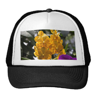 Cluster of yellow and orange orchids mesh hat