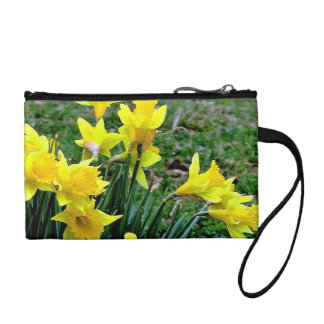 Cluster of Yellow Daffodils blossoming in green ba Coin Purse