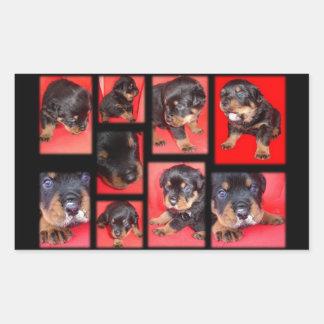 Clyde Collage - Cute Overload Rectangular Sticker