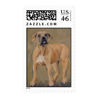 clyde Pitbull puppy postage