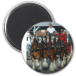Clydesdale 6 horse hitch 2 inch round magnet