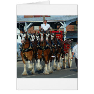 Clydesdale 6 horse hitch greeting card