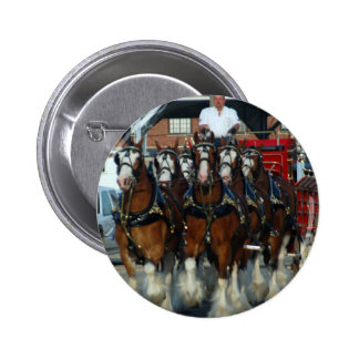 Clydesdale 6 horse hitch pinback button