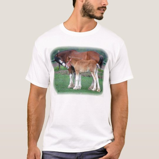 Clydesdale and colt T-Shirt