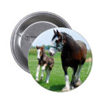 Clydesdale and Filly 2 Inch Round Button