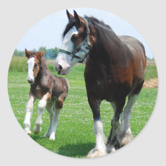 Clydesdale and Filly Classic Round Sticker
