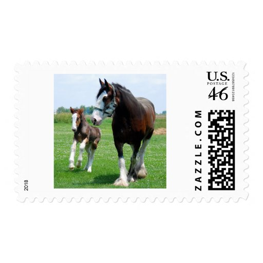 Clydesdale and Filly Stamp