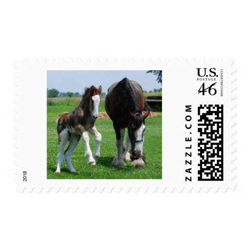 clydesdale and filly postage