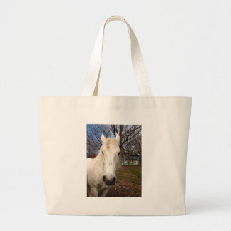 Clydesdale Bags