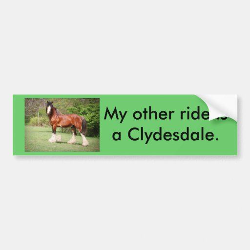 Clydesdale Bumper Sticker