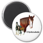 Clydesdale design magnets