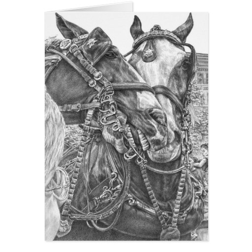 Clydesdale Draft Horse Drawing by Kelli Swan Card | Zazzle