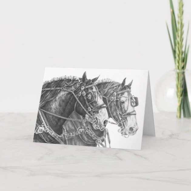 Clydesdale Draft Horse Drawing By Kelli Swan Card Zazzle Com