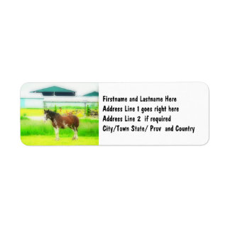 Clydesdale Draft Horse Label