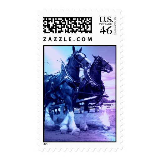 Clydesdale Draft Horse Postage Stamp
