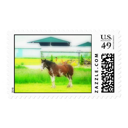Clydesdale Draft Horse Stamp