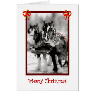 Clydesdale Draft Horses, Merry Christmas Card