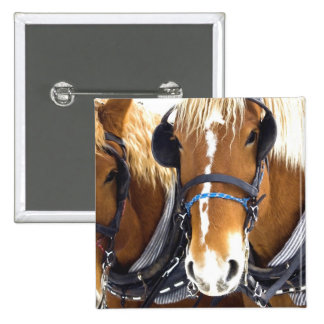 Clydesdale Draft Horses Pin