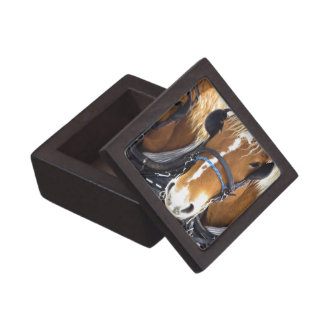Clydesdale Draft Horses Premium Gift Box