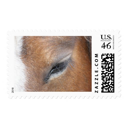 Clydesdale Eye Postage