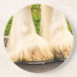 Clydesdale Feet Drink Coaster