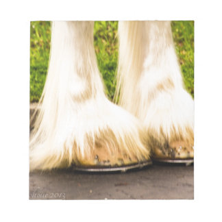 Clydesdale Feet Scratch Pads