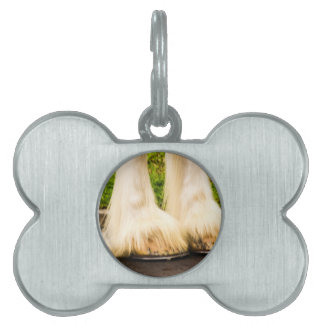 Clydesdale Feet Pet Tags