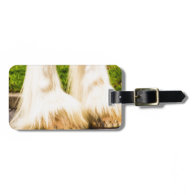 Clydesdale Feet Tags For Bags