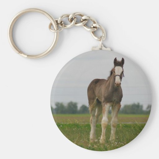 clydesdale filly basic round button keychain