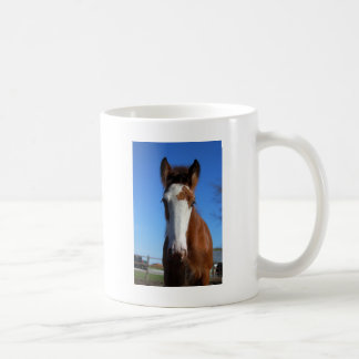 Clydesdale filly mugs