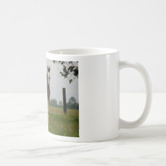 clydesdale filly coffee mug