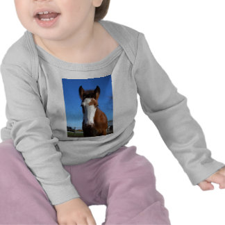 Clydesdale filly shirt