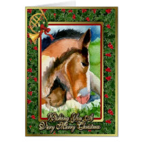Clydesdale Foal Blank Christmas Card