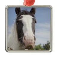 Clydesdale horse portrait ornament