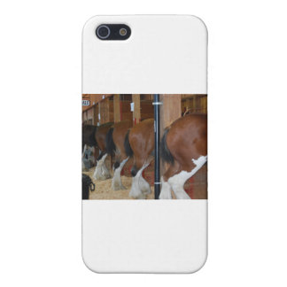 Clydesdale horses cover for iPhone SE/5/5s