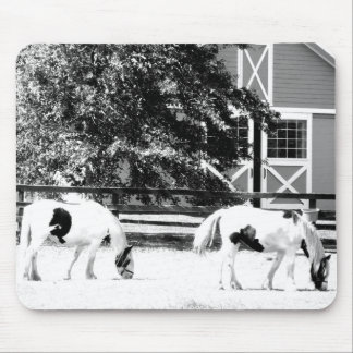 Clydesdale Horses Grazing (Black and White) mousep Mouse Pad