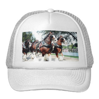 Clydesdale Horses Mesh Hats