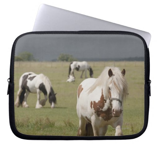 Clydesdale horses in a field, Northumberland, Computer Sleeve