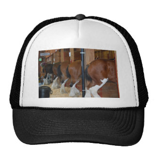 Clydesdale horses trucker hat