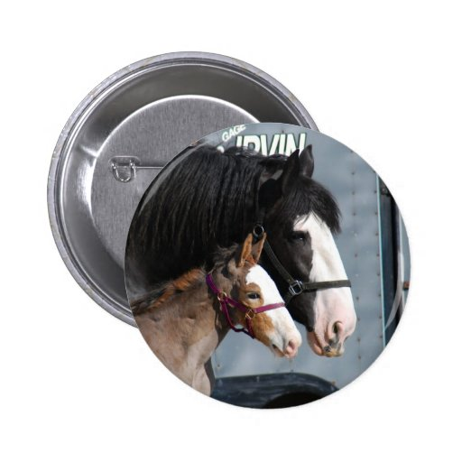 clydesdale mare and filly 2 inch round button