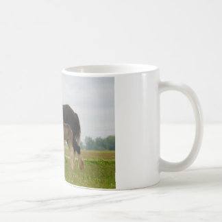 clydesdale mare and filly coffee mug