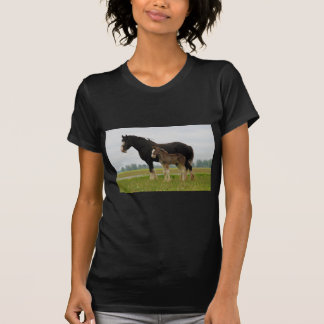clydesdale mare and filly T-Shirt
