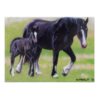 Clydesdale Mare and Foal Horse Portrait Poster
